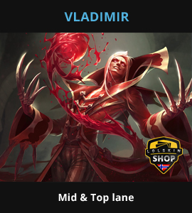 Guide Vladimir